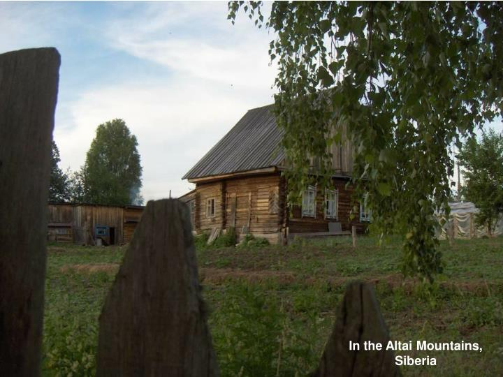 In the Altai Mountains,