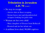 tribulation in jerusalem a d 70 cont
