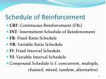 schedule of reinforcement