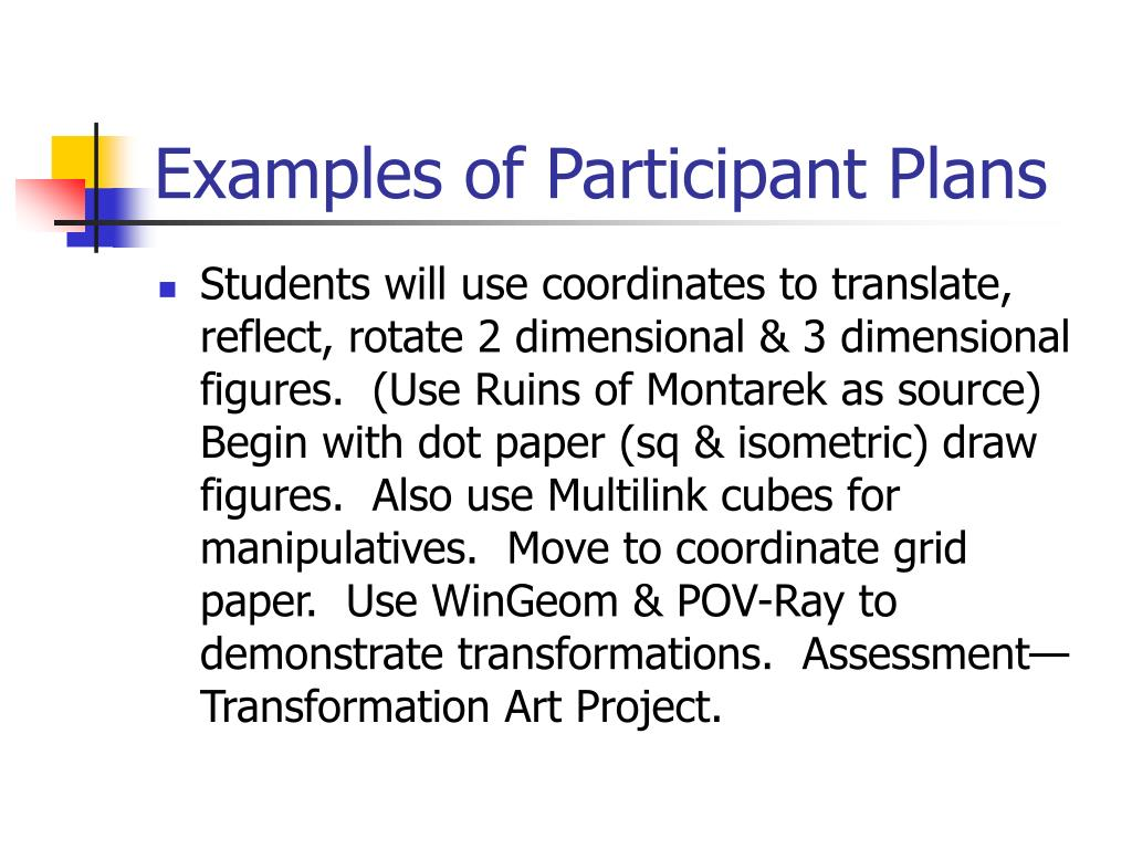 Examples of Participant Plans