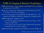 emr for staging in barrett s esophagus