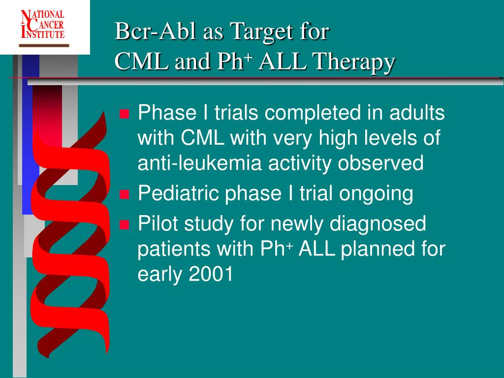 Bcr-Abl as Target for