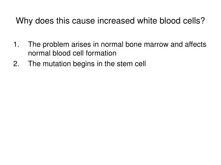 Why does this cause increased white blood cells?