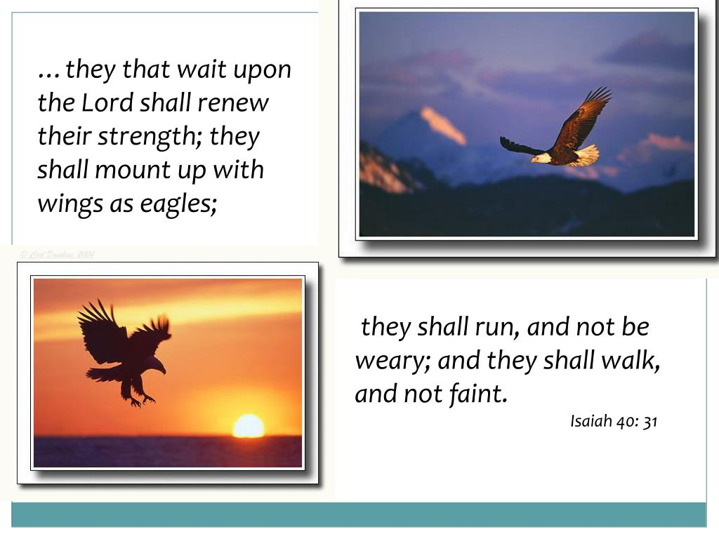 …they that wait upon the Lord shall renew their strength; they shall mount up with wings as eagles;