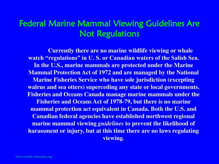 Federal marine mammal viewing guidelines are not regulations