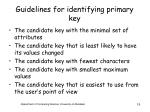 guidelines for identifying primary key
