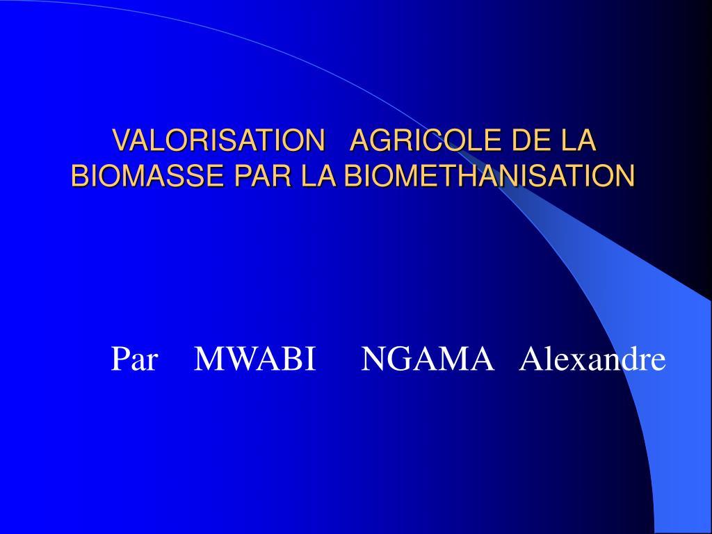 valorisation agricole de la biomasse par la biomethanisation l.