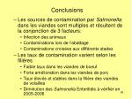 conclusions86