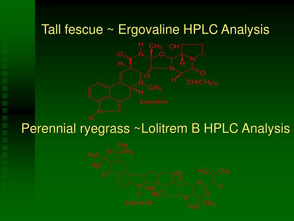 Tall fescue ~ Ergovaline HPLC Analysis