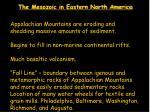 the mesozoic in eastern north america