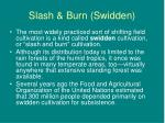 slash burn swidden