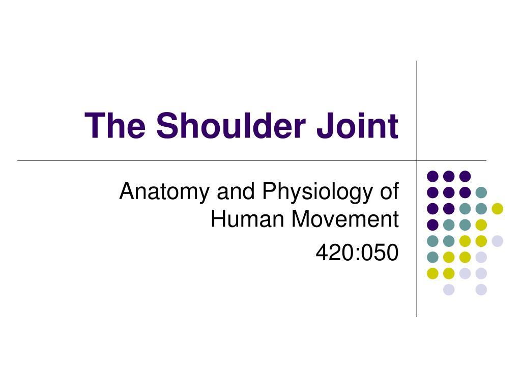 the shoulder joint l.
