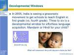 developmental windows