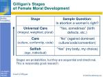 gilligan s stages of female moral development