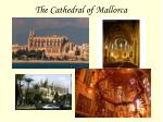 the cathedral of mallorca