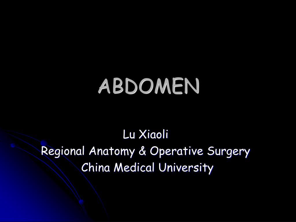 abdomen l.