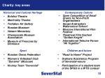 charity key areas
