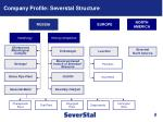 company profile severstal structure