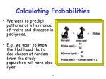 calculating probabilities