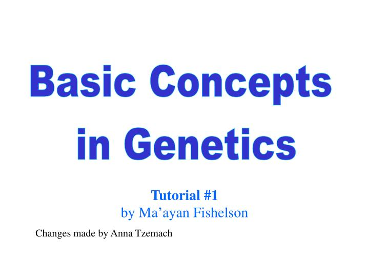 tutorial 1 by ma ayan fishelson changes made by anna tzemach n.