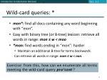 wild card queries12