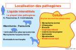 localisation des pathog nes