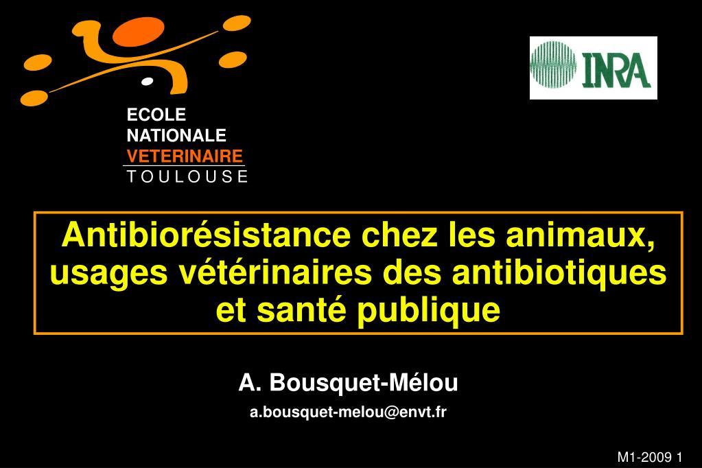 antibior sistance chez les animaux usages v t rinaires des antibiotiques et sant publique l.
