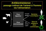 antibior sistance passage indirect de l animal l homme via l alimentation