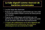 le tube digestif comme r servoir de bact ries commensales