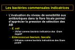 les bact ries commensales indicatrices