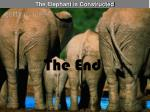 the elephant is constructed