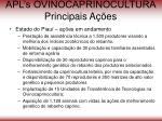 apl s ovinocaprinocultura principais a es64
