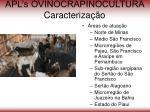 apl s ovinocrapinocultura caracteriza o52