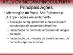 apl s ovinocrapinocultura principais a es56