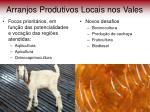 arranjos produtivos locais nos vales