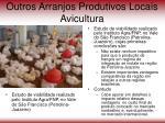 outros arranjos produtivos locais avicultura