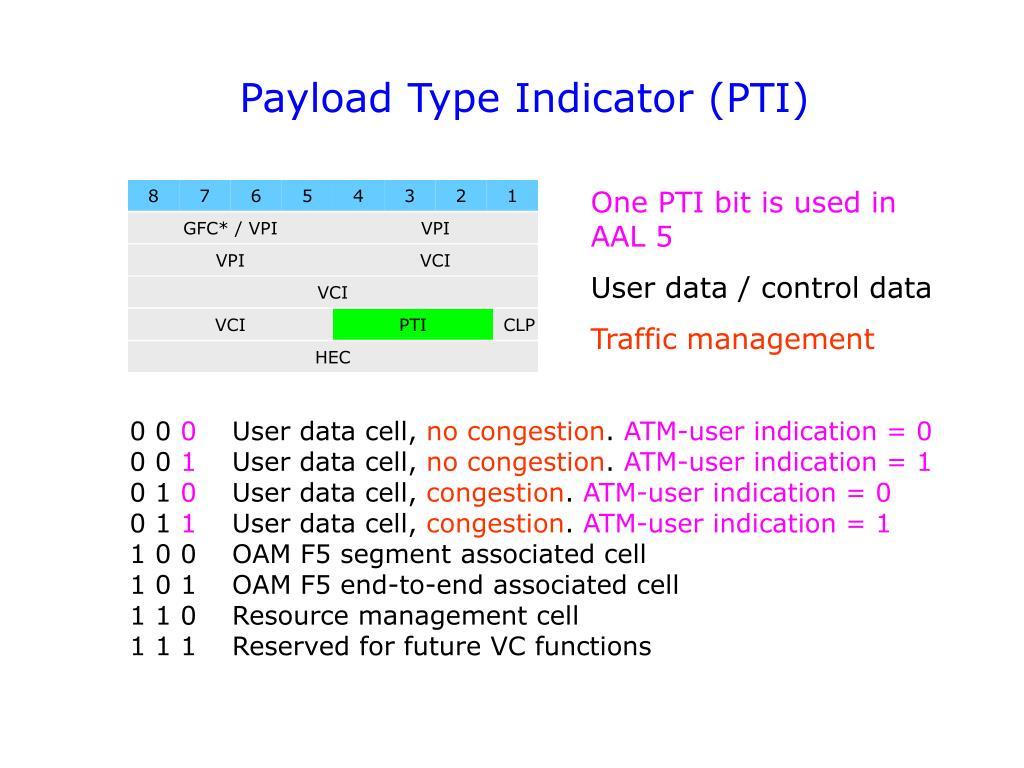 Payload Type Indicator (PTI)