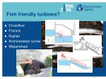 fish friendly turbines
