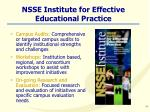 nsse institute for effective educational practice
