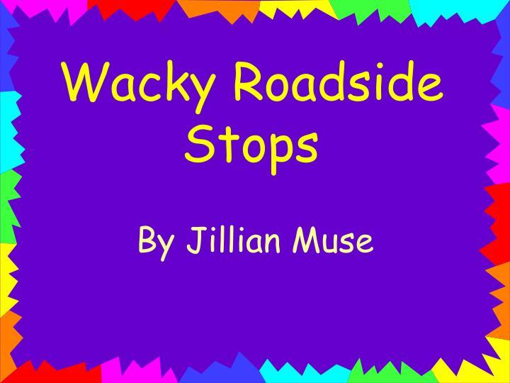 Wacky roadside stops