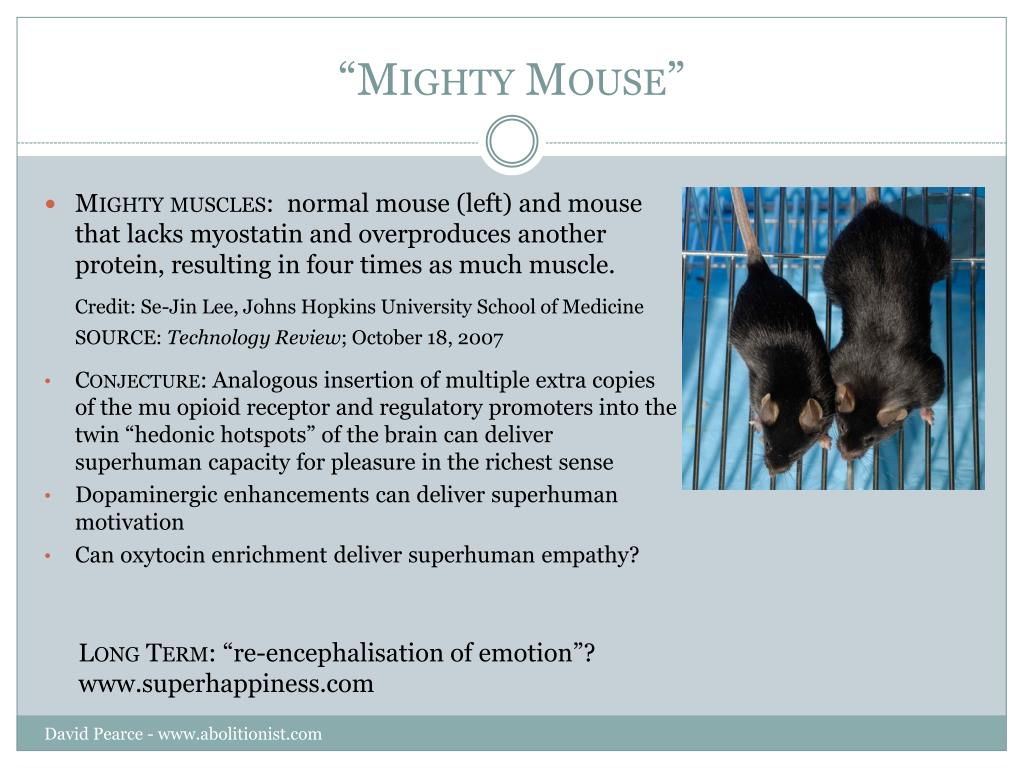 """""""Mighty Mouse"""""""