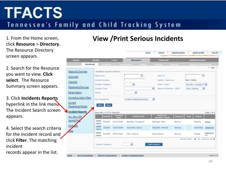 View /Print Serious Incidents