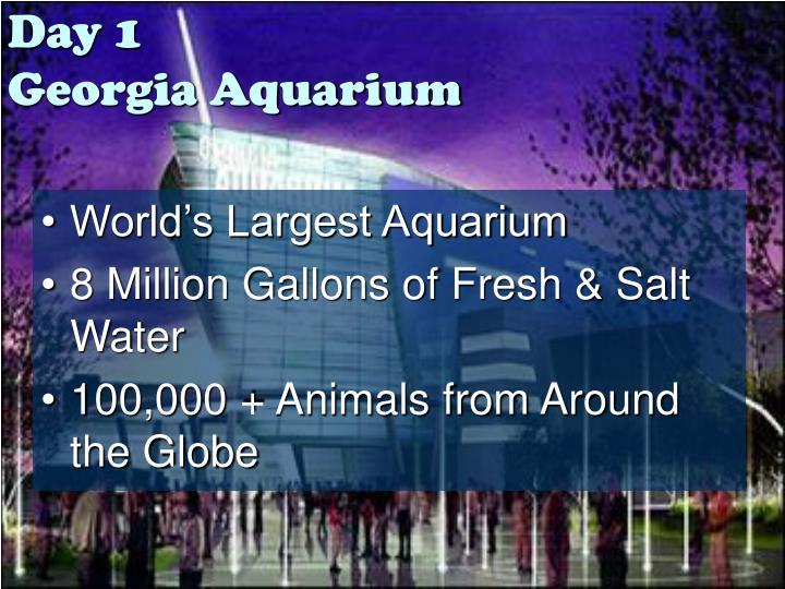 Day 1 georgia aquarium