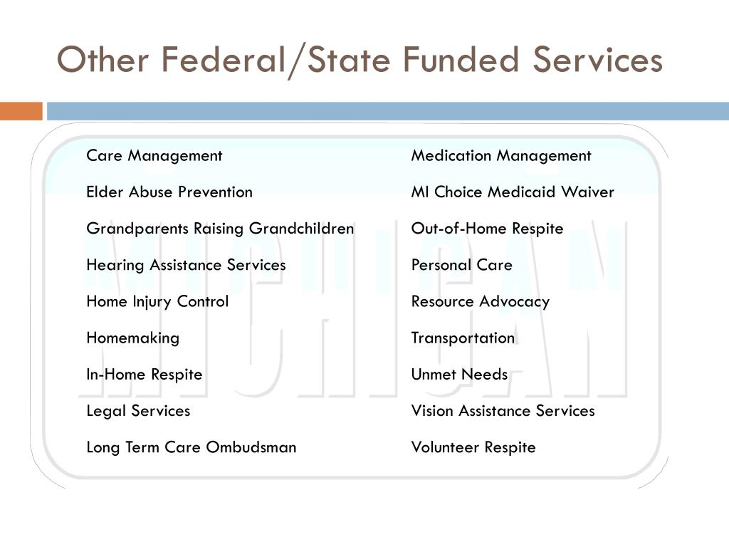 Other Federal/State Funded Services