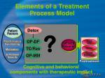 elements of a treatment process model