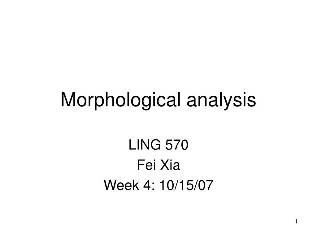 morphological analysis l.