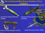 air to ground munitions systems wing agmsw