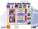 visual scene display