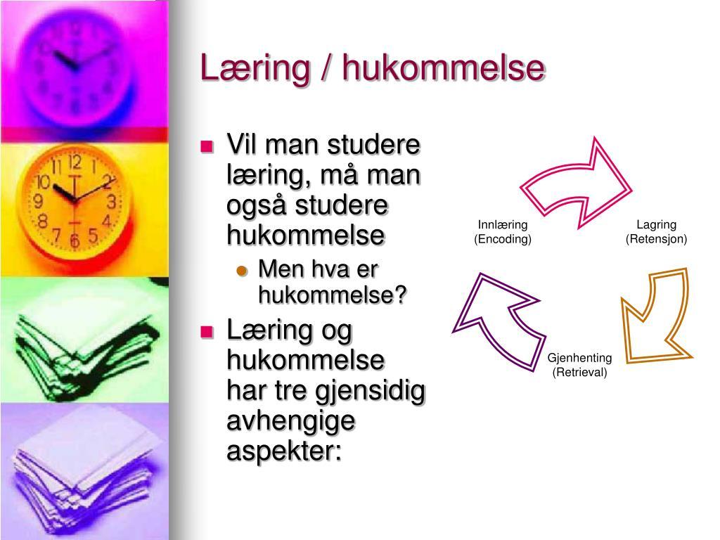 Læring / hukommelse
