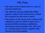 the nose16